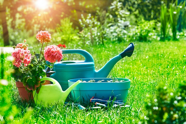 4 Lawn Care Methods to Rejuvenate Your Yard